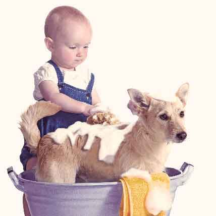 Baby giving dog a bath
