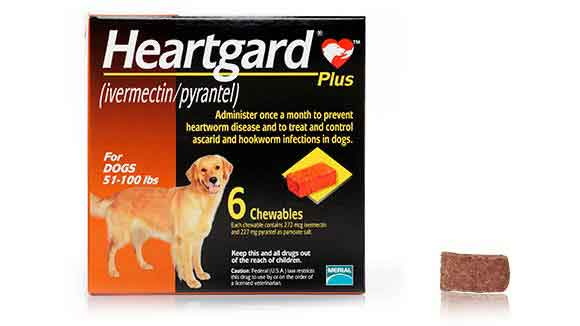 Heartgard Box - Chewable