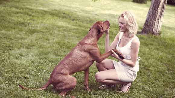 Brown dog and blond woman