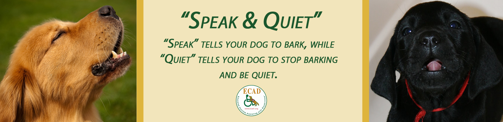 speak-banner