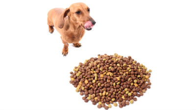 dog-food-ingredients