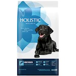 Holistic Select-Adult Health Anchovy, Sardine & Salmon Meal Recipe, Dry Dog Food