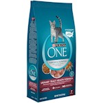 O.N.E. Urinary Tract Health Formula for Cats