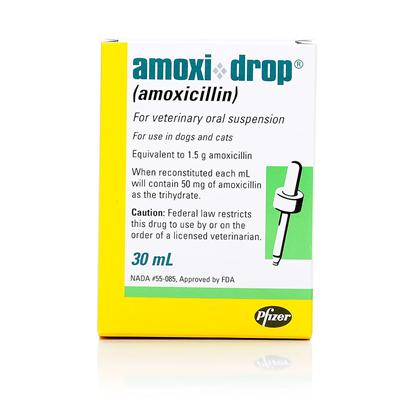 Buy Amoxi Drop (Amoxicillin) 30ml Amoxi-Drops is a Semi-Synthetic Penicillin Popular for Use in Dogs and Cats because it is Easy to Administer, can be Given with or without Food and Treats a Wide Array of Infections. It is an Orally Administered, Prescription Antibiotic, is Treatment for a Variety of Bacterial Infections, Including Ear Infections, Urinary Tract Infections, Skin Infections and Rarely has Side Effects. [10305]