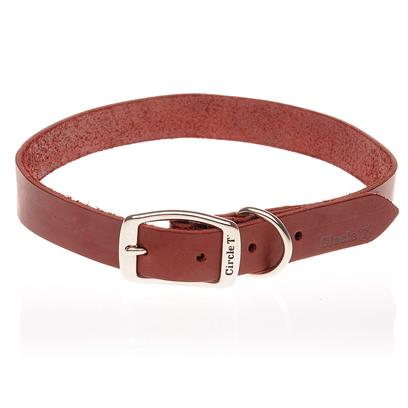 Coastal Presents Latigo Leather Collars and Leads 3/8'12' Collar. Use this Comfortable, Attractive Lead and Color Set for Training and Walking your Pet. [10544]