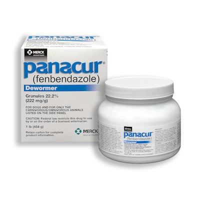 Intervet Presents Panacur Granules - (222mg/G) 1 Lbs (454 G). One of the Most Common Ailments Dogs Face are Worms. Panacur is Used for the Prevention and Treatment of a Broad Spectrum of Gastrointestinal Parasites. It is also Used to Treat Respiratory Tract Infections, Parasites Infecting the Bronchial Tree and Lungs, and Chronic Diarrhea (if no Other Cause can be Determined). The Fda has Approved Panacur for Large and Small Dogs Only. [11676]