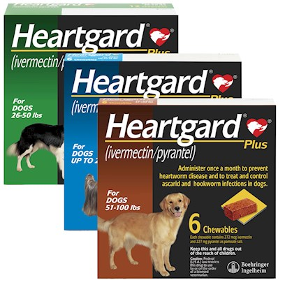 Buy Heartworm Preventative products including Heartgard Plus for Dogs Brown 51-100lbs 12 Month Supply, Heartgard Plus for Dogs Green 26-50 Lbs 6 Month Supply, Heartgard Plus for Dogs Brown 51-100 Lbs 6 Month Supply, Heartgard Plus for Dogs Green 26-50 Lbs 12 Month Supply Category:Heartworm Price: from $8.99