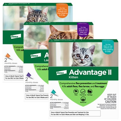 Bayer Presents Advantage Ii for Cats Purple over 9 Lbs-6 Pack. Advantage Ii for Cats Kills Flea Eggs, Larvae, and Adult Fleas Within 12 Hours, while also Protecting Against Lice Infestation. Advantage Ii for Cats Kills Infesting Fleas Within 2 Hours. The Treatment Contains an Insect Growth Regulator (Igr) Called Pyriproxyfen, which Prevents Development of Parasite, Breaking the Life Cycle. One Application of Advantage Flea Protection Safeguards your Cat for an Entire Month, and Prevents Treated Fleas from Infesting your Home. The Treatment is Waterproof and is Even Effective During and After Baths. Advantage Ii is Intended for Cats and Kittens 7 Weeks and Older. [12911]
