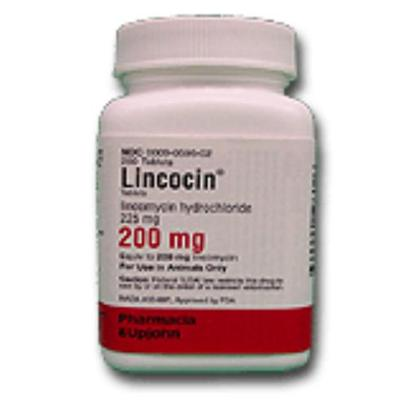 Pharmacia and Upjohn Presents Lincocin 200mg Per Tablet. Lincomycin is an Antibiotic Used in the Treatment of Gram Positive Infections Such as Upper Respiratory, Septicemia and Infections of the Skin and Adjoining Tissues when Caused by Susceptible Organisms. [13286]