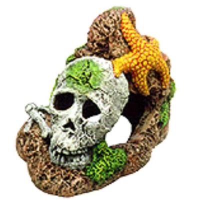 Penn Plax Presents Skull with Starfish 4'' X 3''. This may be the Last Trace of some Ill Fortuned Sea Explorer. Safe for all Aquariums.Sea Creatures are Safe for all Aquariums [14998]