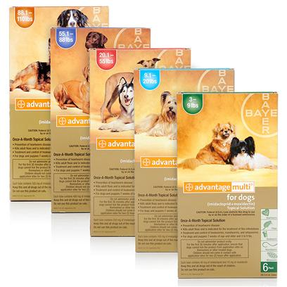 Buy Advantage Multi Heartworm Flea Bayer products including Advantage Multi for Dogs Blue 55-88lbs (6 Month Supply), Advantage Multi for Dogs Brown 88-110lbs (6 Month Supply), Advantage Multi for Dogs Green 3-9lbs (6 Month Supply), Advantage Multi for Dogs Red 20-55lbs (6 Month Supply) Category:Deworming Price: from $91.99