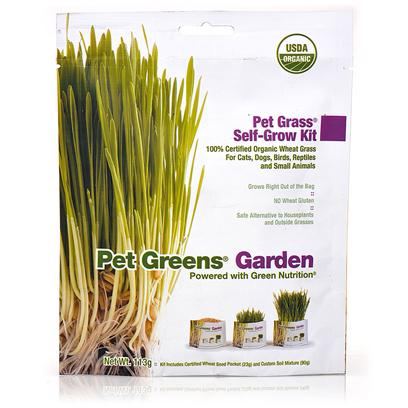 Bellrock Growers Presents Pet Greens Garden Self Grow Grass Kit. Grow your Own Luscious, Healthy Organic Greens Right out of the Bag. No Green Thumb Required! Contains only the Finest Quality Seed in Custom-Blended 100% Certified Organic Wheat Grass Soil to Enhance Nutrients and Flavor Grows in 7-10 Days Unlike Most Self-Grow Kits, Pet Greens Garden is Developed for all Pets - not just for Cats Safe Alternative to Potentially Harmful Houseplants and Chemically Treated Outside Grasses [17522]