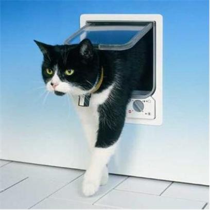 Buy Doors Accessories products including Cat Mate Large Flap Model 221-Large/White, Cat Mate Large Flap Model 221-Large/Brown, Cat Mate Large Flap Model 304-White, Marchioro Clipper Cayman Pet Carrier 4 Carrier-Blue, Marchioro Clipper Cayman Pet Carrier 5 Carrier-Blue Category:Doors Price: from $14.99