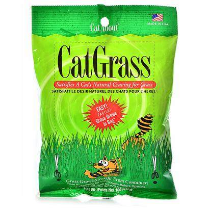 Gimborn Presents Cat Grass Plus 100gm Bag. Easy to Grow Cat Grass Plus is Great for Indoor Cats. Only Need to Water Once and Watch it Grow. [18589]
