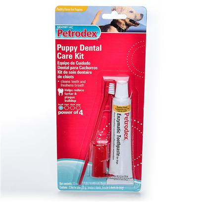 St Jon Laboratories Presents Petrodex Dental Care Sj Denatl Kit Puppy Ckn. A Unique Patent Pending Formula Paste that Adheres to the Pets Teeth for Up to 24 Hours. Breaks Down Tartar and Plaque, has Effects Below the Gum Line to Improve Gum Health. Combined with Petrodex Finger Brush Glove for Easy Application. [19119]