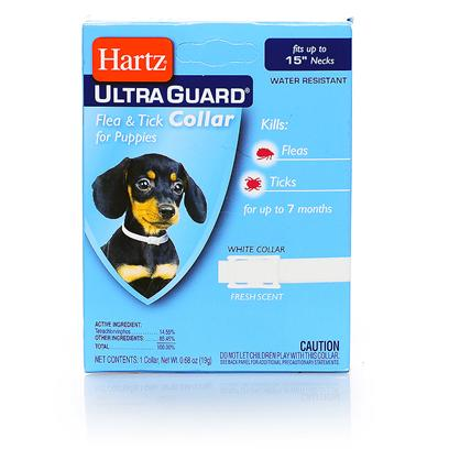 Hartz Presents Hartz Ultraguard Flea &amp; Tick Puppy Collar F T 15'. The Hartz(R) Advanced Care ( Tm ) 2 in 1( R ) Flea &amp; Tick Collar Kills Both Ticks and Fleas for 5 Months. It Kills the Rocky Mountain Wood Tick, Carrier of Rocky Mountain Spotted Fever, and the Deer Tick which may Carry Lyme Disease. These Collars are Available in Various Colors and are Waterproof. Swimming, Rain and Getting them Wet do not Reduce Efficacy. For Use on Puppies 6 Weeks of Age or Older. 0.68oz.; (19g) [19591]