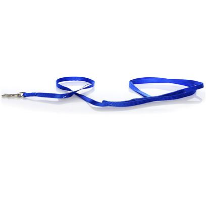 "Coastal Presents Nylon Lead-Blue 3/8' X 6ft. This Lead Consists of 3/8"" Nylon and is Primarily Used for Cats, Puppies, and Very Small Pets. Coastal's High Quality Nylon is Thick and Strong and Specially Processed to Prevent Fraying. All Nylon Products are Carefully and Neatly Finished for the Best Look and Durability. [26724]"