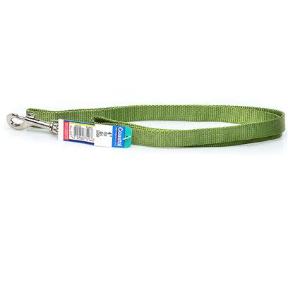 Coastal Presents 3/4' Nylon Lead 4ft Pgr-Palm Green Palm Green-3/4 in X. This Lead Consists of 3/4&quot; Nylon and is Best Suited for Medium or Average Sized Dogs. Coastal's High Quality Nylon is Specially Processed to Prevent Fraying and Increase the Strength. All Nylon Products are Carefully and Neatly Finished for Comfort, Appeal and Durability. [26731]