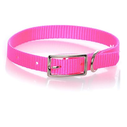 "Coastal Presents Nylon Collar 3/8'x10'-Neon Pink C Nyl 3/8'x10' Npk. This Collar Consists of 3/8"" Nylon and is Best Suited for Cats, Puppies, and Other Small Pets. Coastal's High Quality Nylon is Specially Processed to Prevent Fraying and Increase the Strength. All Nylon Products are Carefully and Neatly Finished for Comfort, Appeal and Durability. [26766]"