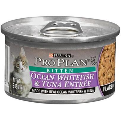 Nestle Purina Petcare Presents Pro Plan Canned Ocean Whitefish and Tuna for Kittens & Kitten 24 3oz Cans. Analysis Crude Protein (Min) - 13.0 % Crude Fat (Min) - 5.0 % Crude Fiber (Max) - 1.5 % Moisture (Max) - 76.5 % Ash (Max) - 3.3 % Taurine (Min) 0.05 % [28022]