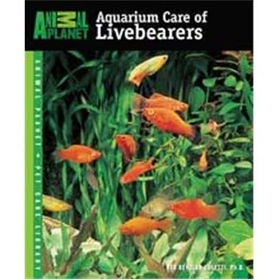 Tfh Animal Planet Care Of Livebearers