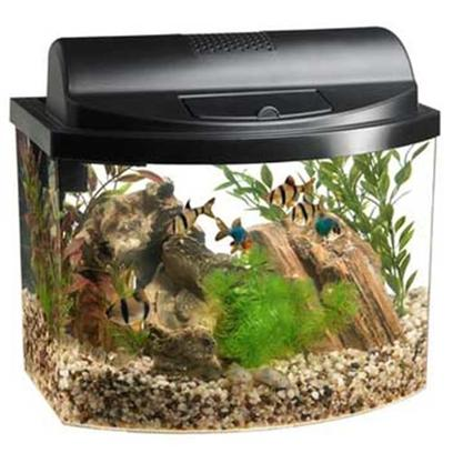 Aqueon Presents Aqueon Mini Bow Desktop Aquarium Kit 5.0gallon. A Fish Home with Style this Aquarium Kit is a Great Choice for First-Time Fish Owners or Anyone Looking for a Compact Display. The Stylish, Space-Saving Design Offers Maximum Viewing with a Unique Acrylic Bow-Front Tank that Provides Ample Room for Small Fish to Swim. Each Kit Includes a Filter, Full Lighted Hood with Feeding Door, Aqueon Water Conditioner, Aqueon Tropical Flakes, and a Set-Up and Care Guide. Just Add Gravel, Plants, and Fish to Enjoy this Easy-to-Maintain Aquarium. [28489]