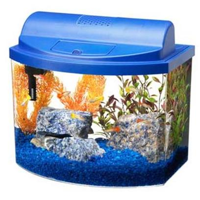 Aqueon Presents Aqueon Mini Bow Kit Blue 5.0gal with Filter. All-Glass Aquarium Offers Several Stylish Bow-Front Acrylic Aquariums for Maximum Viewing in a Space-Saving Design. With Many Color Choices and Sizes, there is a Minibow for Nearly Every Space and Decor Such as a Child's Room, Family Room, Recreation Room, Kitchen Counter Spaces or an Office. These Aquarium Kits Include a Filter, Full Hood with Light and Base. Just Add Gravel, Plants and Fish to Enjoy these Colorful, Easy-to-Maintain Starter Aquariums. [28492]