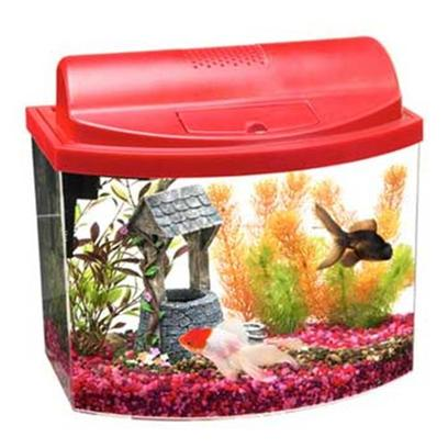Aqueon Presents Aqueon Mini Bow Kit Red 2.5gal with Filter. All-Glass Aquarium Offers Several Stylish Bow-Front Acrylic Aquariums for Maximum Viewing in a Space-Saving Design. With Many Color Choices and Sizes, there is a Minibow for Nearly Every Space and Decor Such as a Child's Room, Family Room, Recreation Room, Kitchen Counter Spaces or an Office. These Aquarium Kits Include a Filter, Full Hood with Light and Base. Just Add Gravel, Plants and Fish to Enjoy these Colorful, Easy-to-Maintain Starter Aquariums. [28496]