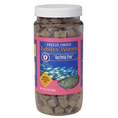 San Francisco Bay Brand Presents San Francisco Bay Brand (Sf) Freeze Dry Tubifex Worms Dried 56gm. Gamma Radiated, Free of Parasites and Harmful Bacteria. Excellent Growth Enhancer for Freshwater Fish. All Freshwater Angels, Discus, Barbs, Cichlids, Gouramis, Live Bearers, Loaches, Eels, Catfish, Tetras, Sharks & Silver Dollars. [29709]