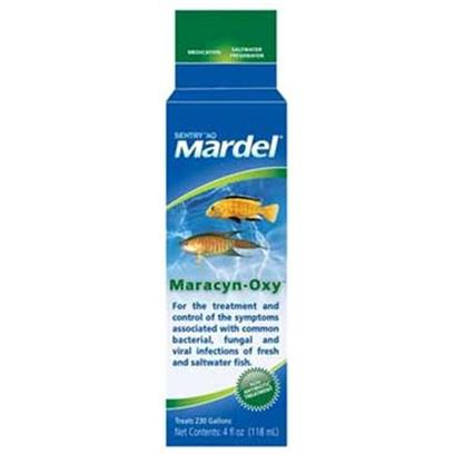Virbac Presents Mardel Maracyn-Oxy (Freshwater/Saltwater) 4oz. Maracyn Make Use of a Revolutionary Technology that Delivers the Antibiotic Directly to the Fish. Contains Two Powerful Broad-Spectrum Antibiotics that are Effective Against the Bacteria that Cause Fin and Tail Rot, Popeye, Dropsy, Ulcers and Mouth and Body 'Fungus'. As the Bio Spheres Attach to the Fish, they Form a Protective Medicated Layer over the Fish's Skin that Kills the Infecting Bacteria and Prevents Re-Infection. For Use in Fresh and Saltwater Tanks. [30013]