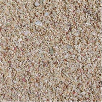 Carib Sea Presents Carib Aragonite Reef Sand 40lb. Caribsea Aragonite Products Nobody Puts as Much Effort into Bringing you the Quality and Selection of Aragonite Products as Caribsea Does. All of our Substrates are Scientifically Sound and Proven Products. Aragonite, Purposely Engineered and Free of Impurities Such as Ash, Metals, Pesticides, and Silica; Allows you to Create a Safe and Beautiful Environment for your Fish and Invertebrates. Why Take Chances with Other Brands? Seaflor Special Grade Reef Sand™ - this Grade of Aragonite is Specifically Engineered for Plenum Type Nitrate Reducing Beds or Anywhere a Deeper Bed is Called For. The Pore Water Space Created by the Precision Grading also Allows Maximum Ph Support and Dissolution of Calcium Carbonate. This is a Very Versatile Product! Grain Size 1.0 - 2.0 Mm. [31212]