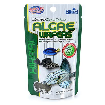 Hikari Usa Presents Hikari Tropical Algae Wafer .70oz. Algae Wafers™ were Specifically Developed for the Hard to Feed Plecostomus and Other Algae Eating Bottom Feeders. Hikari was the Originator of this Diet, Now Copied by Many. Accept no Substitutes, Request the First and Finest, Algae Wafers™. [32089]