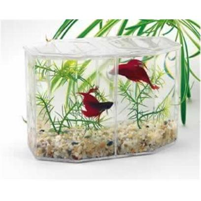 Lee's Presents Lees Dual Betta Keeper Mini. Divided Tank Encourages Neighborly Love though a Single Betta in a Bowl is a Striking Sight, these Fighters have Territorial Tendencies that Make Owning Several of them Difficult to Manage. But Now you can House your Fish Together with LeeS Dual Betta Hex Tank. A Removable Divider Separates the Rival Fish in a Single Tank. This Allows Betta Aficionados to Maximize Space in their Homes and Display the Gem-Tone Fish Side by Side. The TankS Modular Design is Perfect for Stacking, and Comes with Everything you Need to Ready your Betta Duplex for Instant Move-In. Just Add Water, then Introduce your Fish to their New Home! [32378]