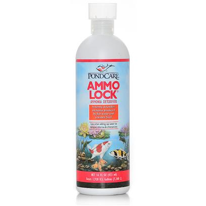 Buy Aquarium Pharmaceuticals Pond Ammo Rocks products including Aquarium Pharmaceuticals (Ap) Pond Ammo Rocks Pondcare Ammo-Lock 64oz, Aquarium Pharmaceuticals (Ap) Pond Ammo Rocks Pondcare Ammo-Lock 16oz (Treats 1,920 Gallons) Category:Water Treatment Price: from $14.99