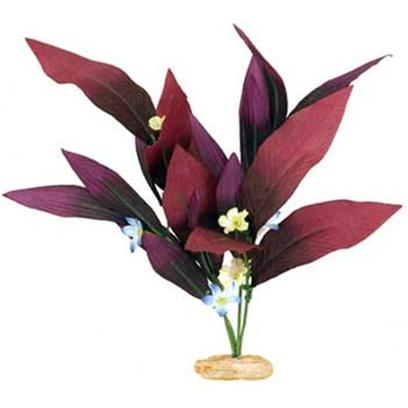 Blue Ribbon Presents Blue Ribbon (Br) Plant African Sword Mini. Color Burst Silk-Style Plant African Sword Plant W/Flowers. Available in Other Sizes. Plum Large [33246]