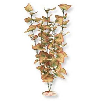 Blue Ribbon Presents Plant-Flowering Marsh Wood (Orange) X-Large. Br Colorburst Plant Xlarge 18 to 19&quot; Tall - Flowering Marsh Wood with Soft Silk-Style Flowers &amp; Leaves that Sway Naturally in Water. [33281]