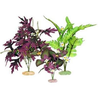 Blue Ribbon Presents Plant-South American Flowering Cluster Multipack. Color Burst Silk-Style Plants - Medium Value Pack - South American Flowering Cluster Includes 1 Each of the Following Fountain Fern W/Buds-Medium Amazon Butterfly Leaf W/Buds-Medium South American Rift Cluster W/Flowering Buds-Medium [33296]