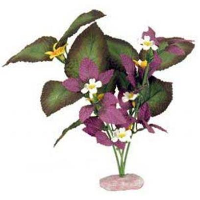 Blue Ribbon Presents Plant-South American Rift Cluster with Buds (Plum) Small. Br Colorburst Plant South American Rift Cluster with Soft Silk-Style Flowers & Leaves that Sway Naturally in Water. [33300]