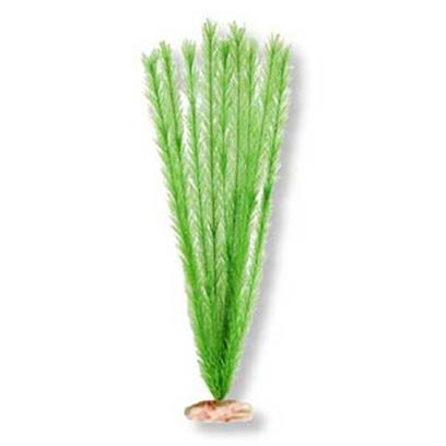 Blue Ribbon Presents Plant-Soft Foxtail (Emerald Green) Mini. Br Colorburst Plant Xlarge 18 to 19&quot; Tall - Soft Foxtail with Soft Silk-Style Flowers &amp; Leaves that Sway Naturally in Water. [33315]