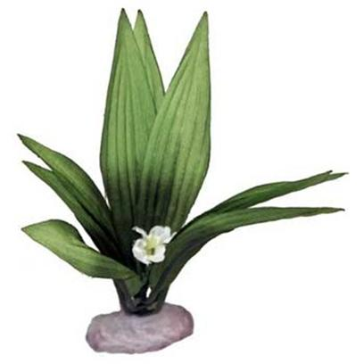 "Blue Ribbon Presents Plant-Flowering Sword Leaf Cluster (Green) Mini. Br Colorburst Plant Mini 3.5 to 4"" Tall - Flowering Sword Leaf Cluster with Soft Silk-Style Flowers & Leaves that Sway Naturally in Water. [33316]"