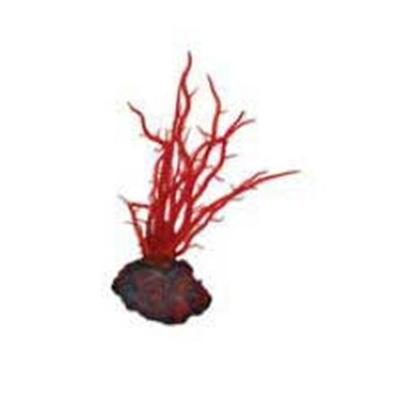 Buy Beautiful Small Aquariums products including Instant Ocean-Aquarium Systems (Io) Seagdn Coral Red Ceramium Small, Instant Ocean-Aquarium Systems (Io) Seagdn Coral Red Dictyota Small Category:Plants Price: from $8.99