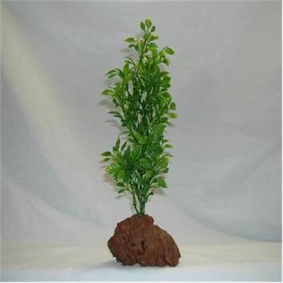 "Rocky Mountain Plants Presents Rocky 1 Green Lava Plant #Rm-2 Medium 9'-10' on Rock. Mounted on Solid Weighted Bases Make these Plants Suitable for the Aquarium or Terrarium. Green Eel Grass 12""-13"" on White Rock. Green 9""-10"" [33372]"