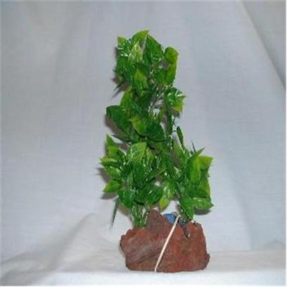 Rocky Mountain Plants Presents Rocky Air Green Lava 2 Plants #Mb-1 Aerating Double Plant 9-10' on Rock. Mounted on Solid Weighted Bases Make these Plants Suitable for the Aquarium or Terrarium. Green Eel Grass 12'-13' on White Rock. Green 9'-10' [33380]