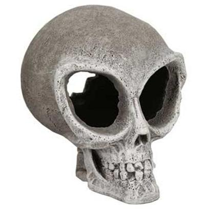Blue Ribbon Presents Blue Ribbon (Br) Alien Skull Small Skull-Small. Alien Skull Small - do Aliens Really Exist??? - this Eerie Rare Skull will Make Anyone Ask...Is it Real? Looks that Way, but They'll Never Know! Provides a Great Place for Fish to Explore. [33829]