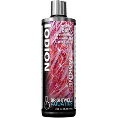 Brightwell Aquatics Presents Brightwell Aquatics (Bwell) Iodion Liquid 8.5oz/250ml. • Highly-Concentrated, Extended Activity Iodide Solution. • Provides Iodide, which is Important to Hermatypic Corals and Other Invertebrates Harboring Zooxanthellae, Macroalgae, and also to the Health of Fishes. • Stronger than Most Competing Products. • the Nature of Iodide Sources Used Makes Iodion More Effective than Standard Iodide-Solutions. • Suitable for Use by Aquarium Hobbyists of all Skill and Experience Levels. • Composed of Purified Water and Ultra-High Purity Materials. • Formulated by a Marine Scientist. Liquid 250-Ml [34276]