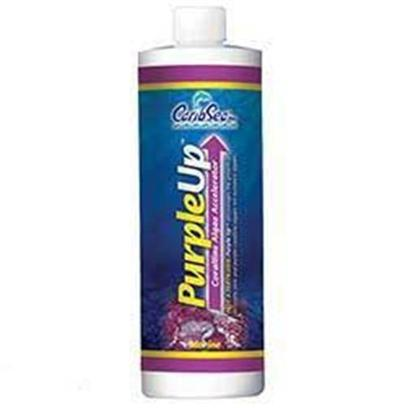 Carib Sea Presents Carib Purple Up Corraline Algae Growth Accelerator 8oz. Purple-Up™ - Purple-Up™ is a New Pink and Purple Coralline Algae Accelerator. Since Purple-Up™ is not a Fertilizer, it does not Promote the Growth of Nuisance Algae. How does it Work? Purple-Up™ Uses a Unique Dual Method Approach to Coralline Algae Acceleration. It Contains Ionic Calcium which Immediately Raises Dissolved Calcium Levels in your Aquarium Water. At the Same Time Super Sea Calcium™ (a 10 Micron Aragonite Powder Derived from Natural Seawater) Targets the Live Rock Surface. Super Sea Calcium™ Dissolves in Situ; Delivering Calcium, Strontium, Magnesium, and Carbonate Right where it's Needed. Purple-Up™ also Replenishes Iodine; an Essential Element for Coralline Algae Tissues that Quickly Becomes Depleted in Closed Systems. Purple-Up™ is an Excellent Addition to any Aquarium with Stony Corals Too! One Bottle of Purple-Up™ Replaces the Typical Multi Product Recipe for Successful Coralline Algae Growth Favored by Advanced Aquarists. [34332]