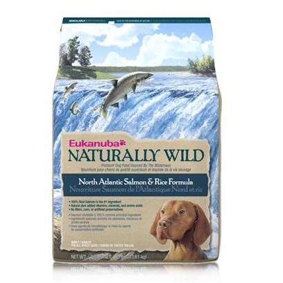 P&amp;G Presents Eukanuba Dog Naturally Wild Salmon/Rice 30lb Bag. A Healthy Meal Designed for your Dog's Nutrient Needs, Eukanuba's Dog Food is Packed with all the Nutrients Needed to Keep your Dog Healthy and Strong. Made from only Trusted Ingredients, Eukanuba Presents Formulas that Fit the Needs of Dogs of all Different Ages and Breeds. Available in Great Flavors Like Wild Salmon, Lamb, Wild Turkey, Wild Venison and Rice, there is a Meal for Every Dog! Delicious and Nutritious, Eukanuba's Dog Foods are Carefully Made to Delight Taste Buds. A Great Way to Spoil your Pet, Eukanuba's Dog Food will Surely Make your Pet Wag his Tail for More. Primary Protein Source Salmon Primary Carb Source Salmon Analysis Crude Protein Minimum 23.00 %Crude Fat Minimum 14.00 %Crude Fiber Maximum 4.00 %Moisture Maximum 10.00 %Vitamin E Minimum 140 Iu/Kgomega-6 Fatty Acids Minimum 2.00 %*Omega-3 Fatty Acids Minimum 0.40 %**not Recognized as an Essential Nutrient by the Aafco Dog Food Nutrient Profiles [36297]