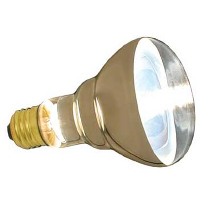 Buy Zoo Repti Halogen Bulb products including Zoo Repti Halogen Bulb 100watt Repti-Halogen Inc Spot Lamp, Zoo Repti Halogen Bulb 150watt Repti-Halogen Inc Spot Lamp, Zoo Repti Halogen Bulb 50watt Repti-Halogen Inc Spot Lamp Category:Pet Supplies Price: from $12.99