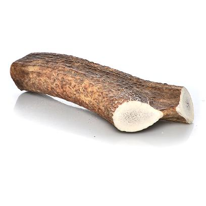 Happy Dog of Cape Cod Presents Happy Dog of Cape Cod Whole Elk Antler X-Large 8-13' for 75 Lbs and Up. All-American Dog Elk Antler Chews from Montana. Elk Antlers are an Annually Renewable Crop, Providing a Safe, all-Natural Antler Chew Treat for your Dog. Every Year, Elk Drop their Old Hard Antler and Start Growing New Antlers Each and Every Spring. All our Antler Chews are all-Natural as they Come from Free Range Elk that are Never Given any Steroids, Unnecessary Antibiotics or Other Growth Promoting Chemicals. Natural Elk Antler Chews are Much Longer Lasting than Rawhide or Synthetic Chew Toys, Even Longer than Raw Bones. This is Due to their High Calcium Content of these Bone-Like Natural Growths. Antler Chews are Stronger than Raw Bones and are of a Finer Texture. Antler Dog Chews Cut from Real Hard Antler will not Easily Break, Chip or Splinter Like Cooked or Raw Bones Might. [37742]