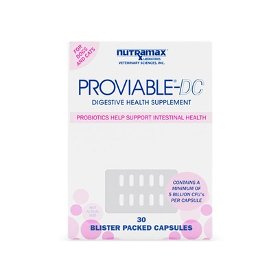 Nutramax Labs Presents Proviable Dc 30 Capsules. Proviable Contains a Source of Live (Viable) Naturally Occurring Microorganisms. Proviable Contains Multiple Species and Billions of Beneficial Microorganisms Per Daily Administration. The Proviable-Dc Capsules Continue to Reestablish Healthy Intestinal Balance. Added Prebiotics, Found in Both Formulations, Encourage Growth of the Proviable Beneficial Microorganisms Within the Intestinal Tract. [38011]